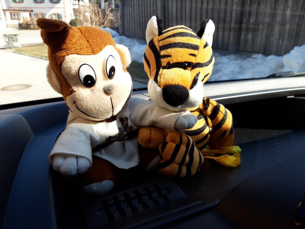Koko u. Tiger